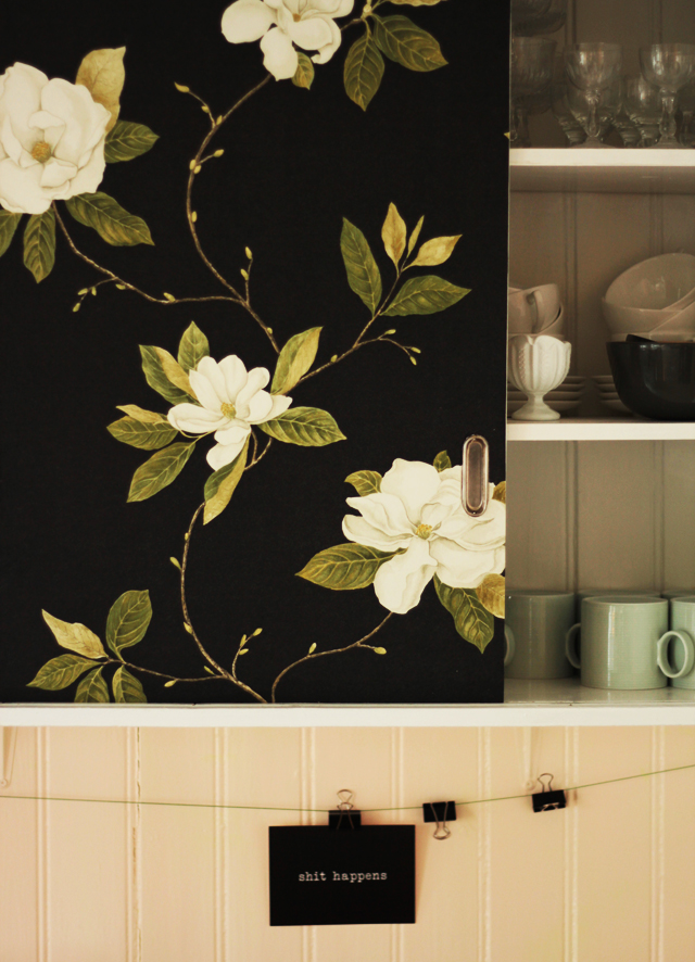 Wallpaper On Cabinet Doors Image Collections Accordion Style